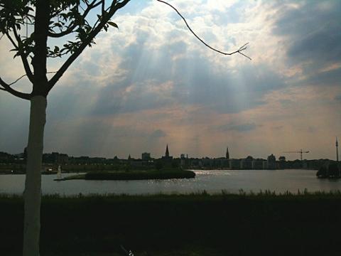Phoenixsee Dortmund im Gegenlicht