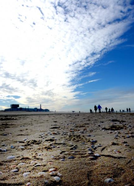 Scheveningen: Strand mit Muscheln, blauer Himmel