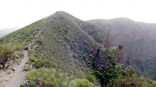 Gran Canaria: Caldera de Bandama