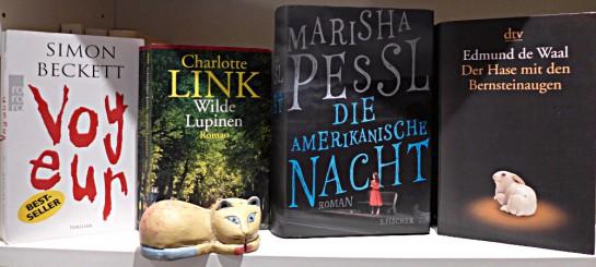 Bücher im Januar 2015: Beckett, Link, Pessl, de Waal