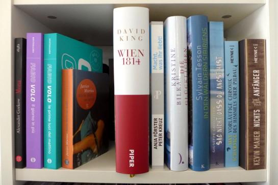 Mein Büchervorrat