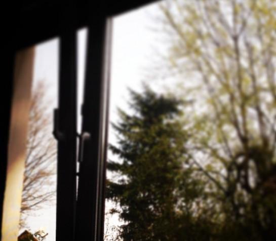 12von12 im April: Nlick aus dem Schlafzimmerfenster (verschwommen)