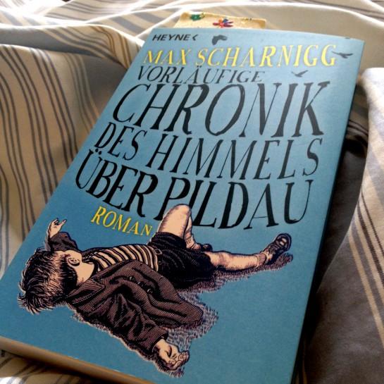 12von12 im April: Vorläufige Chronik des Himmels über Pildau (Buch)