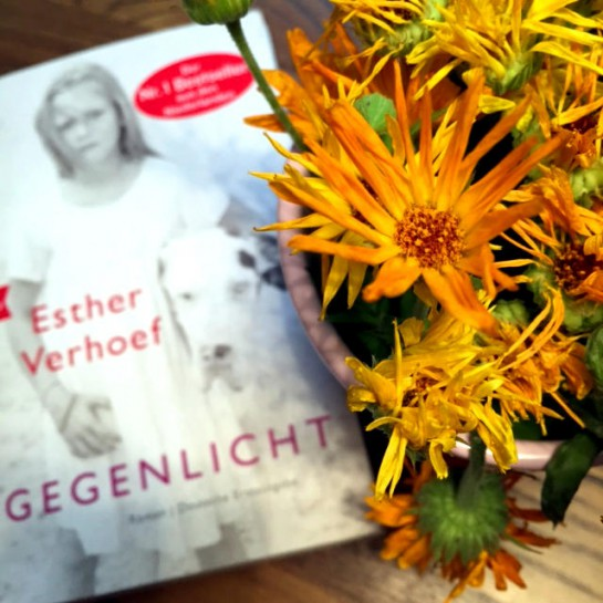 """12von12: Blumen mit Buch """"Gegenlicht"""""""