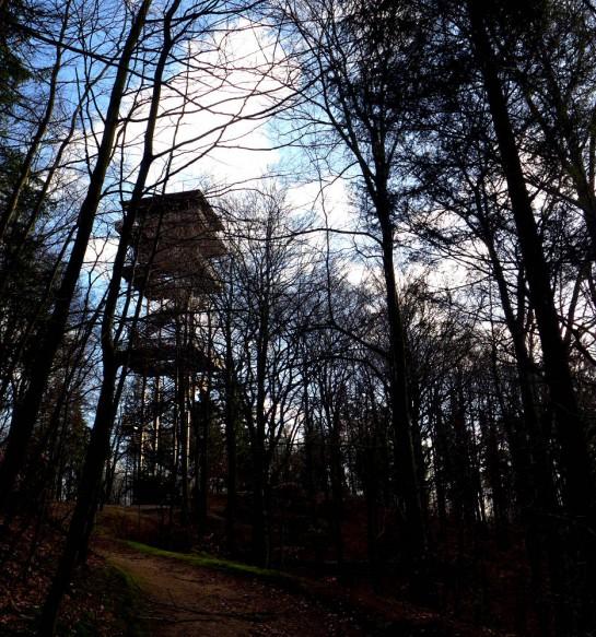 Turmberg mit Holzturm auf dem Gipfel