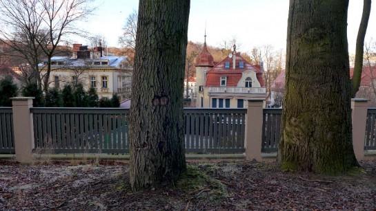 Wrzeszcz: Blick aus dem Wald auf Stadtvilla