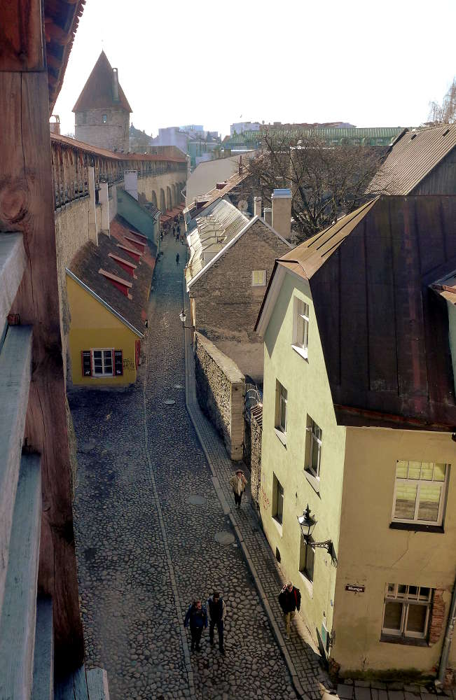 Tallinn_Stadtmauer