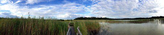 Kemeri_Nationalpark_Panorama