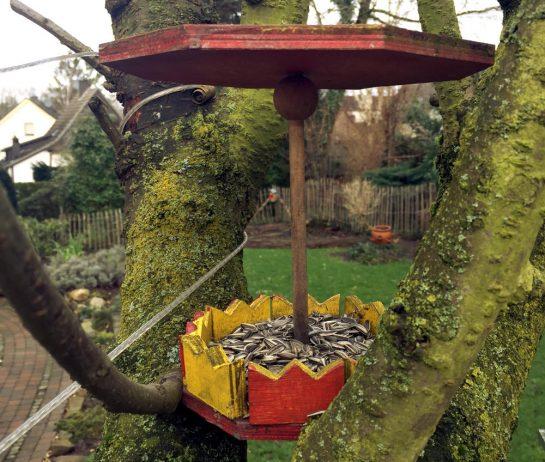 Vogelfutterstation im Kirschbaum