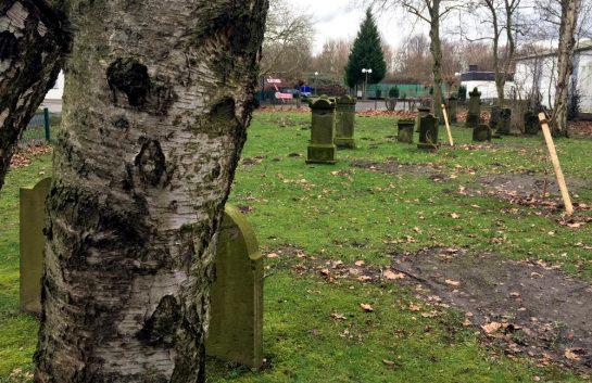 Juedischer Friedhof Aplerbeck: Grabmale auf einer Wiese
