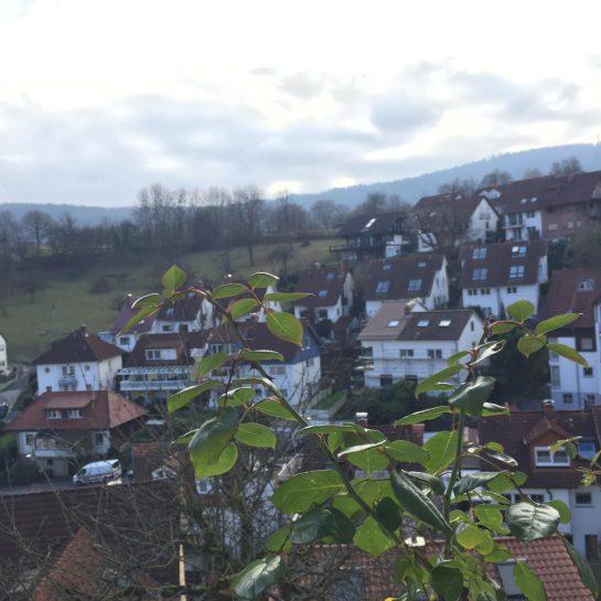 Heidelberg: Blick auf Ziegelhausen mit ein bisschen Sonne