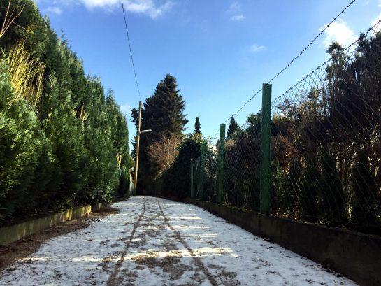 Fußweg mit Schnee und blauem Himmel