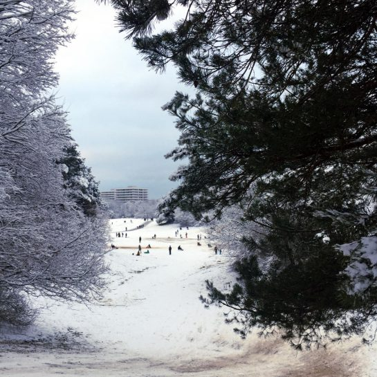 Rodelhügel im Park