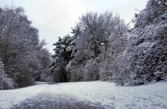 Verschneiter Weg im Park