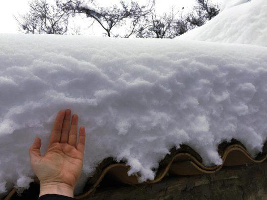 Schnee mit Hand
