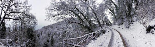 Weg zum Castello die Bianello den Berg hinauf