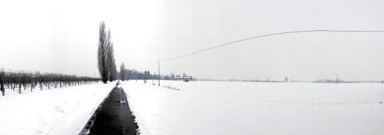 Wirtschaftsweg in Schneelandschaft