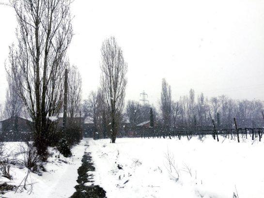 Starker Schneefall kurz vor Zuhause