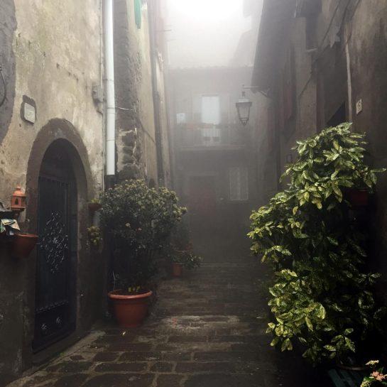 Montefiascone, Häuser mit Büschen im Nebel