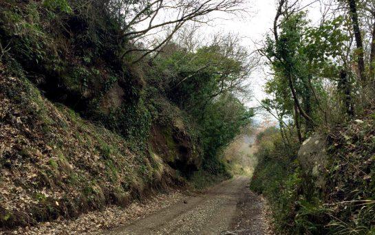 Weg durch eine Felsgasse