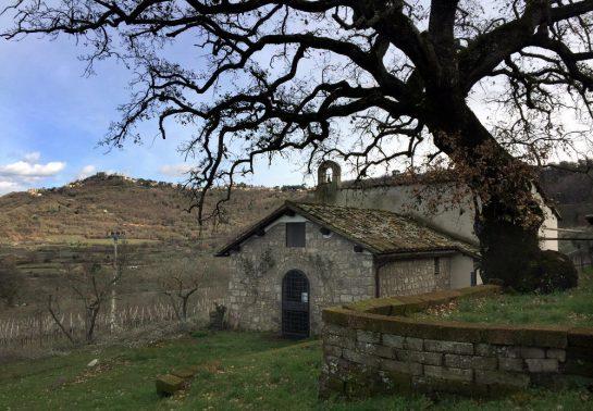 Kirche unter einem Baum, dahinter ein Berg