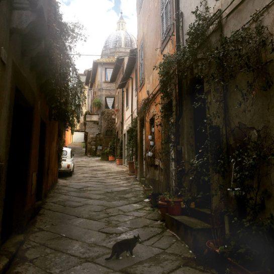 Gasse mi Katze in Viterbo, im Hintergrund Kirchenkuppel