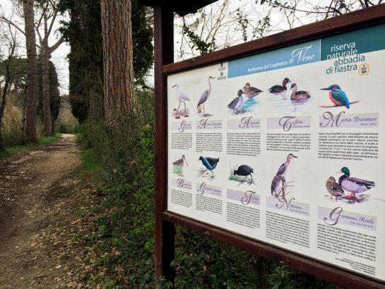 Tafel mit Vogelarten