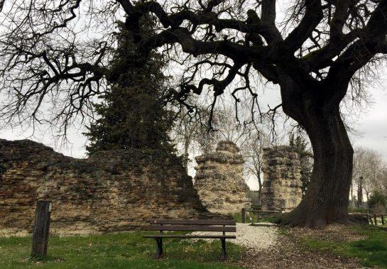 Alter Mauer mit Bank und einem Baum