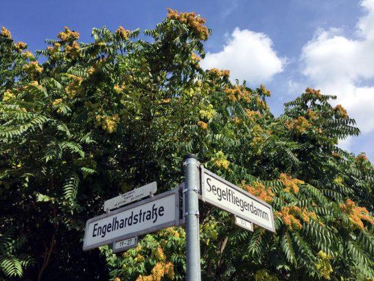 Berlin: Engelhardtstrasse