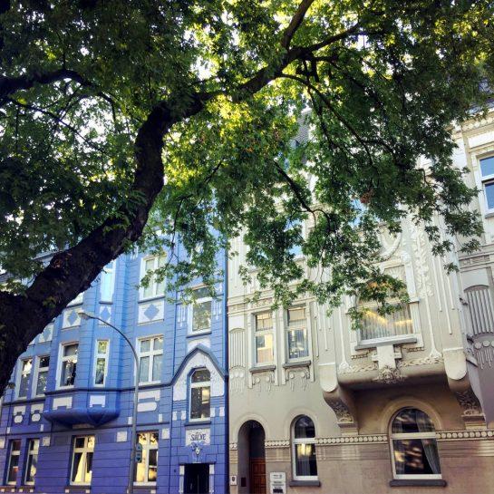 Gepflegte Duisburger Altbauten und ein Baum