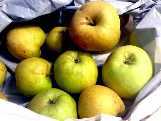 Boskoop-Äpfel in einer Tüte
