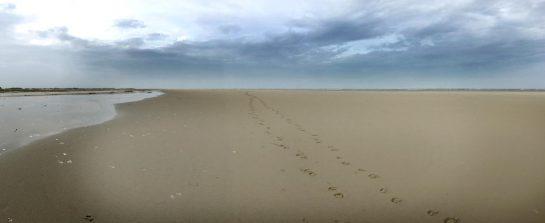Sand und Wasser, Norderney, Ostende
