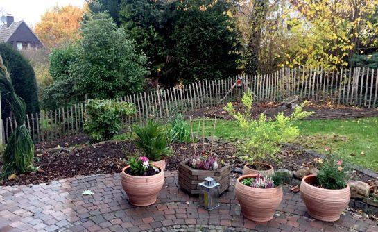 Terasse mit bepflanzten Töpfen, dahinter kahler Garten