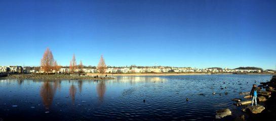 Blick auf den Phoenixsee, teils zugefroren, Sonne