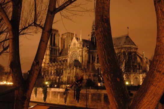 Notre Dame vom anderen Seine-Ufer