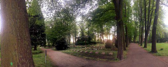 Eine baumbestandene Wegekreuzung, links im Hintergrund Gräber. Die Sonne geht unter.