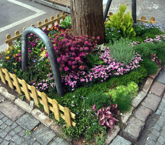 Kleines Blumenbeet an einem Straßenbaum