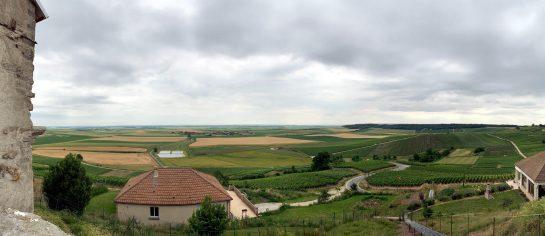 Aussicht von einem Hügel in die Ebene der Champagne: Felder und Weinreben.