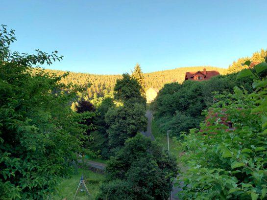 Wald und Hügel