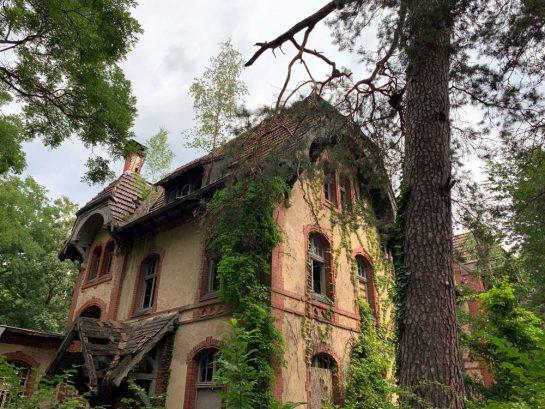 Bewachsenes Haus auf dem Gelände