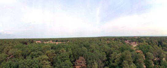 Panoramablick über den Wald. Klein darin: zwei Backsteingebäude