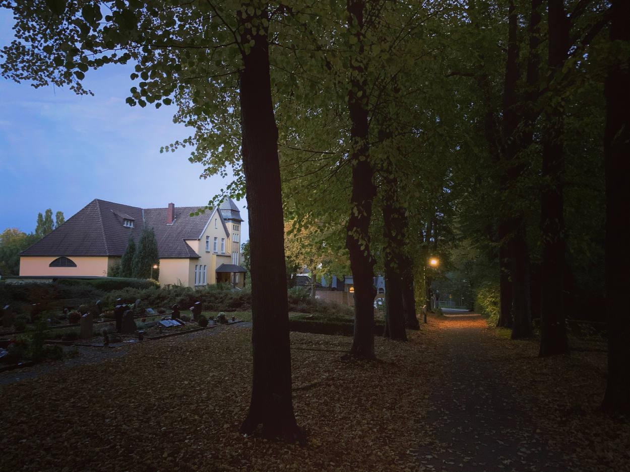 Links ein gelbes, großes Haus. rechts eine Alee aus Bäumen. Dämmerlicht.
