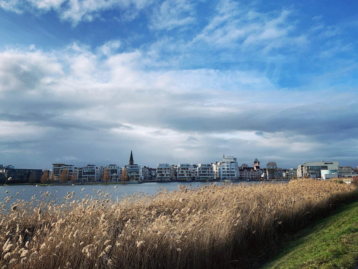 Blick über Schilf auf den See, dahinter weiße Gebäude