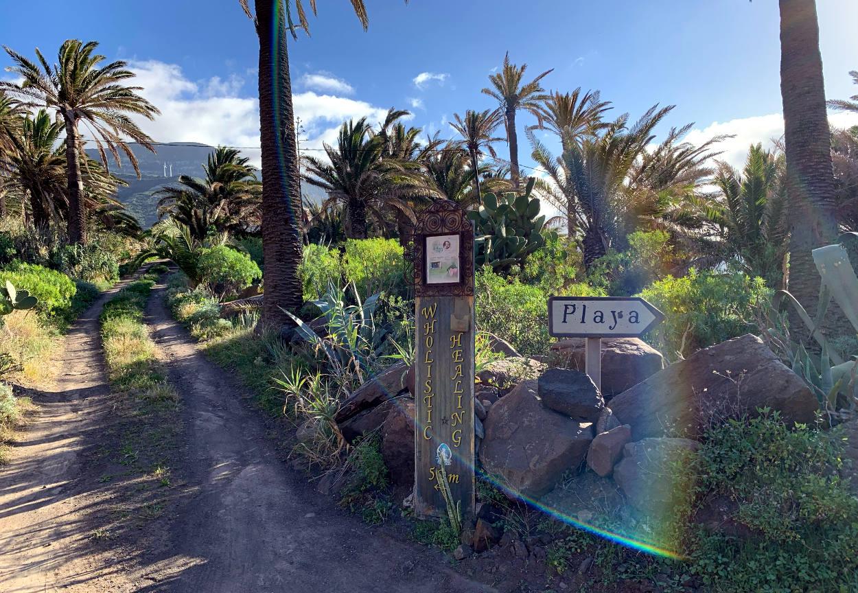 """Straße mit Palmen, daneben ein selbst gemaltes Schild """"Wholistic Healing"""". Daneben ein weiteres Schild: """"Playa""""."""