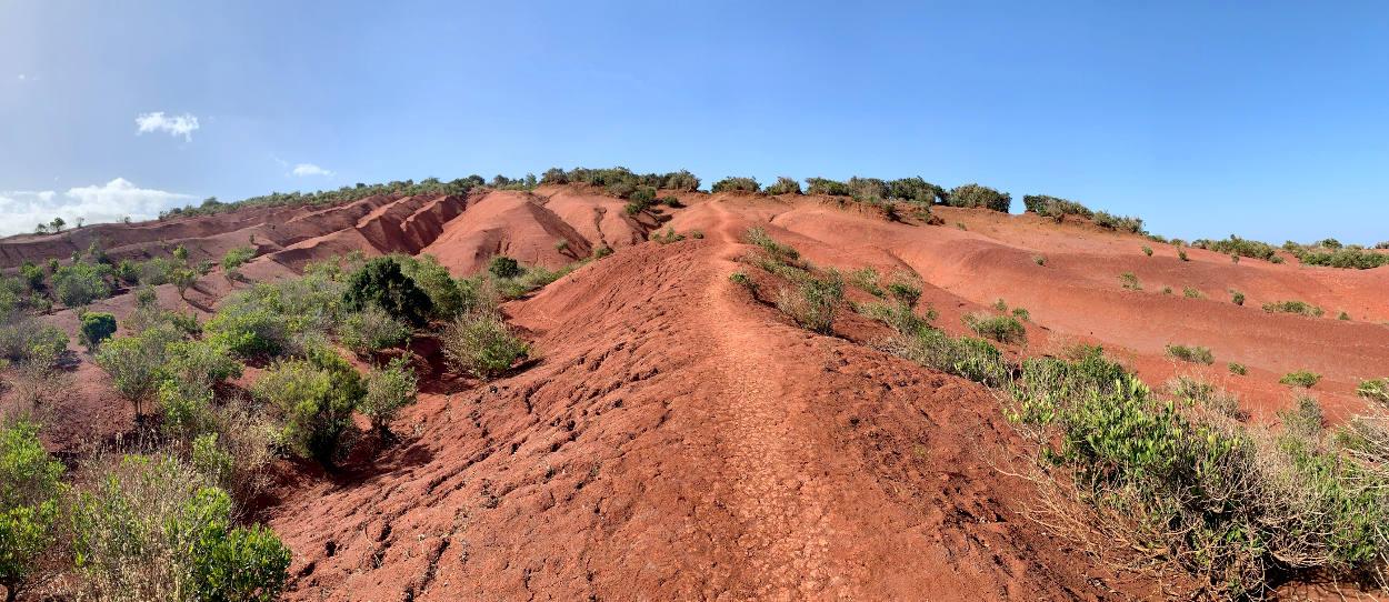 Panoramabild: Rote, zerfurchte Erde mit vereinzelten Büschen, ein Weg führt hinauf