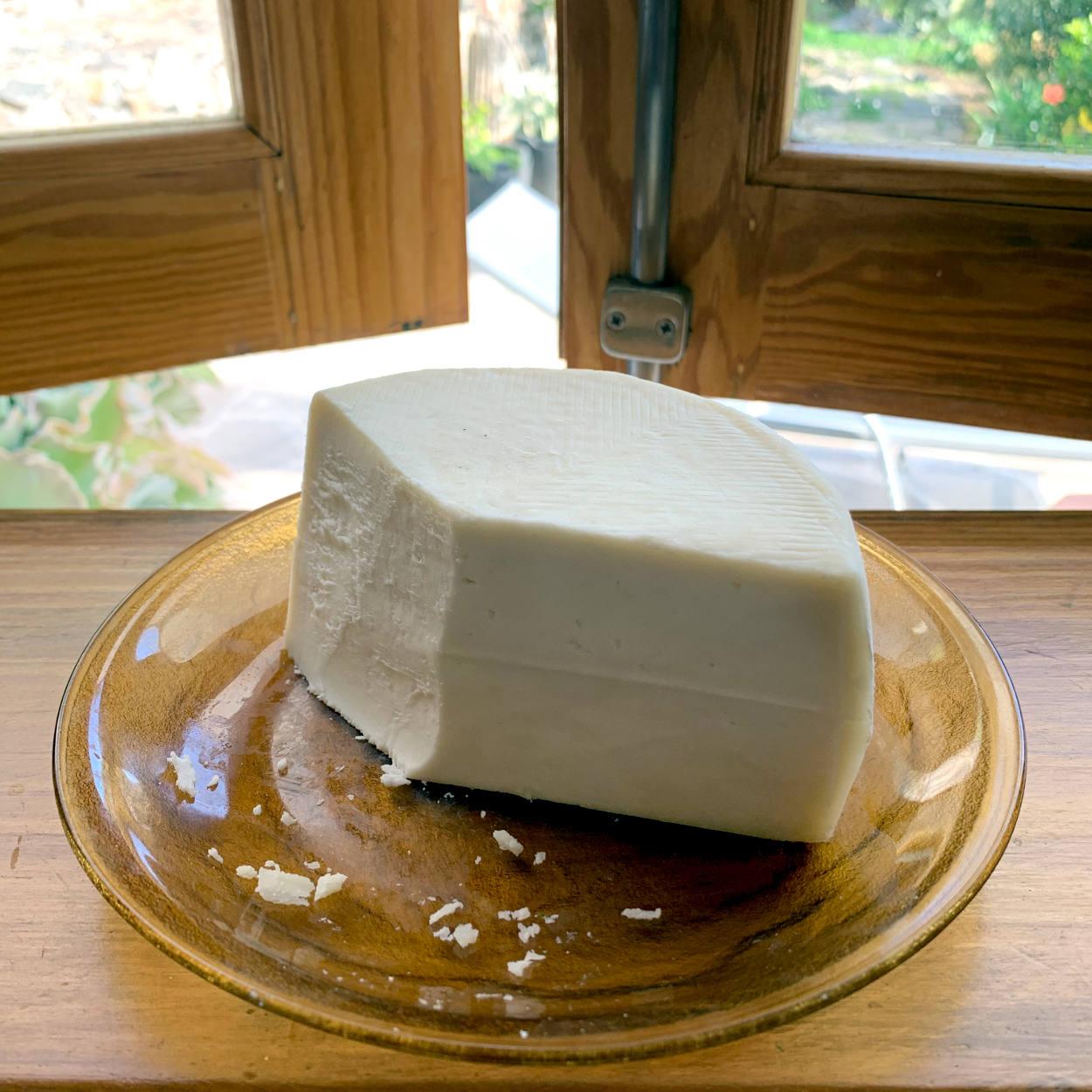 Halber, sehr heller Käselaib, angeschnitten auf einem Teller