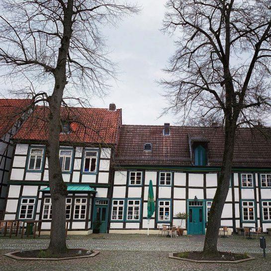 Fachwerkhäuser auf dem Marktplatz, davor zwei Bäume