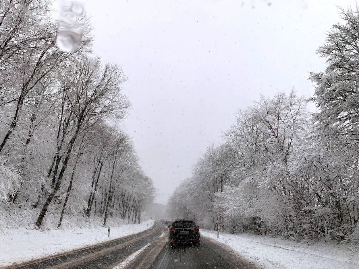Straße, verschneit, umrahmt von verschneiten Bäumen, Autos in einer Schlange.