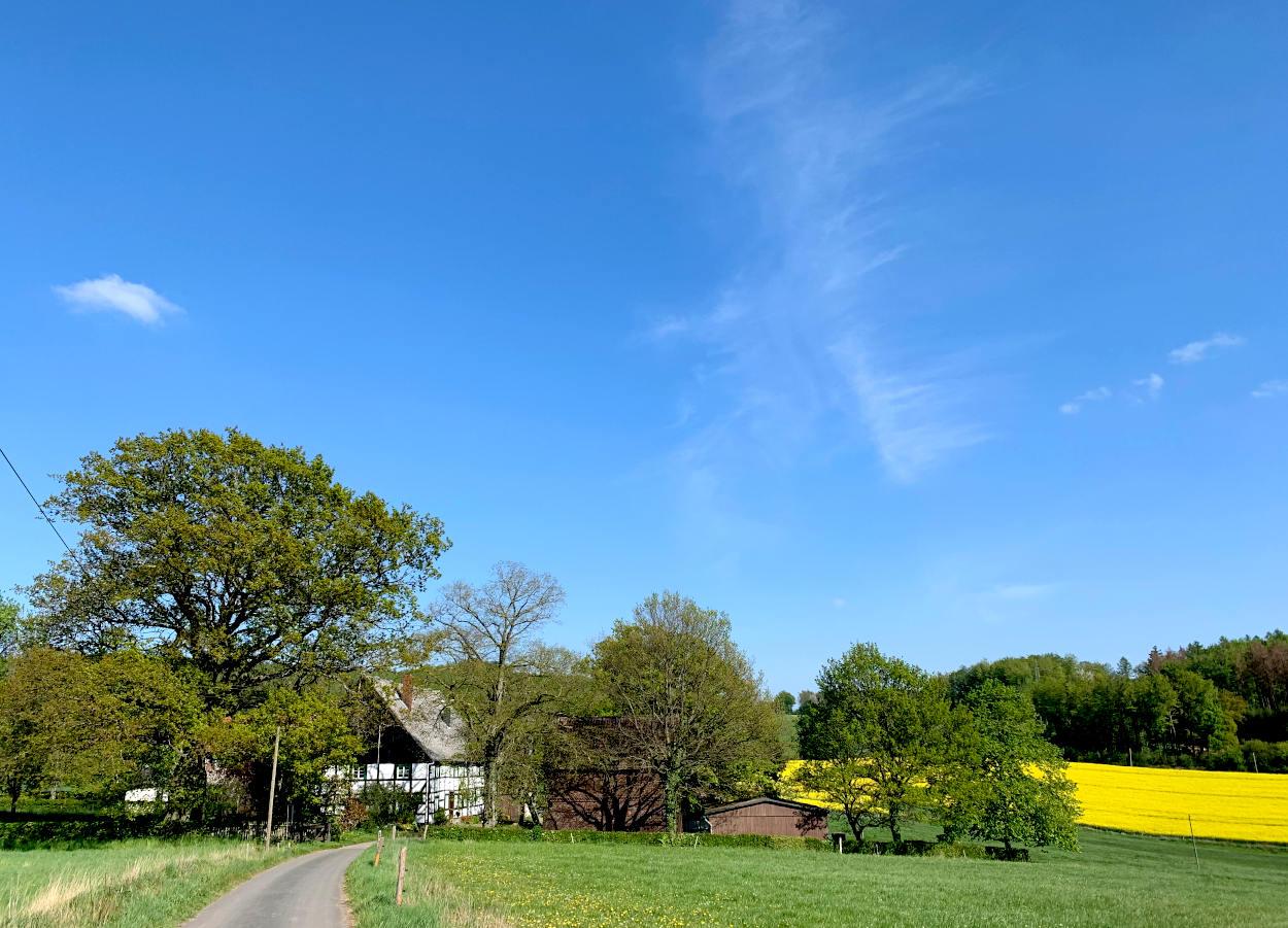 Fachwerkhaus unter Bäumen an Feldern
