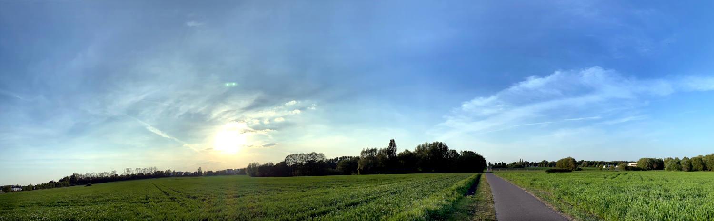 Panoramaaufnahme eines Feldes, darin ein Weg, Abendsonne.